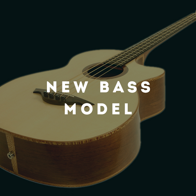 New Acoustic Bass Model